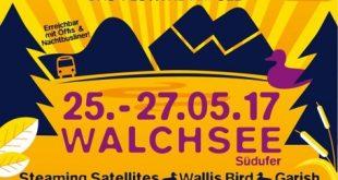 319110 310x165 - Stoabeatz Open Air Festival 2017 im Kaiserwinkl in Tirol - künstlerischer Freigeist trifft auf traditionelle Werte