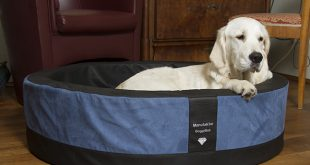 319814 310x165 - Edle Hundekörbe mit super softem Kunstleder und Memory Foam Liegeflächen