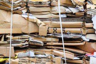 320067 310x205 - 30 Jahre Verpackungsrecycling - Spitzenreiter Faltschachteln
