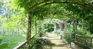 Pergola 310x165 - Die Pergola: Das Highlight für Garten und Terrasse