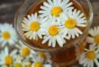 Kamille 110x75 - Rosacea - wenn die Haut überempfindlich auf Reize reagiert