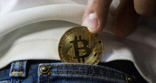 Bitcoin Wallet 310x165 - Wie soll ich eine Bitcoin-Wallet auswählen?